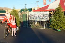 Santa Cruz County Christmas Tree Farms by December 2013 Bikepilgrim Com