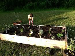 Raised Gardens For Beginners - gardening for beginners archives idyllic gardens