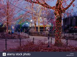 Lights At Lincoln Park Zoo by Lincoln Park Christmas Zoo Lights Festival Chicago Illinois