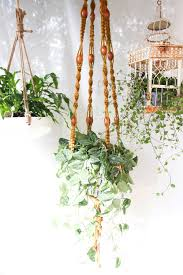 Creative Ways To Decorate Your Home 5 Creative And Easy Ways Of Decorating Your Home With Plants
