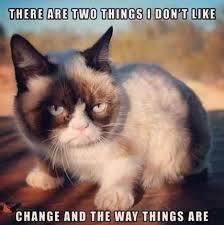 Meme Angry Cat - grumpy cat meme 061 min jpg resize 660 661
