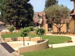 green lawn bushnell florida landscaping business backyard