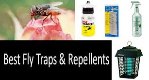 Best Way To Get Rid Of Mosquitoes In Your Backyard How To Get Rid Of House Flies A Review Of The Best Traps Killers