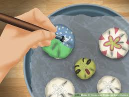 how to clean and preserve sand dollars 14 steps with pictures