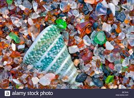 glass beach seashell at glass beach kauai hawaii stock photo 25976870 alamy
