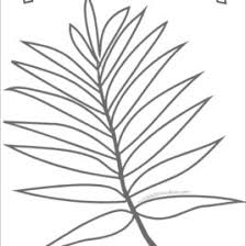 coloring page palm leaf kids drawing and coloring pages marisa