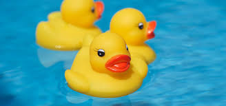 rubber duckie day 13th jan 2018 days of the year