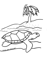 sea turtle coloring pages beach coloringstar