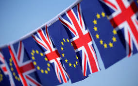 how should you vote in the eu referendum a guide for the undecided
