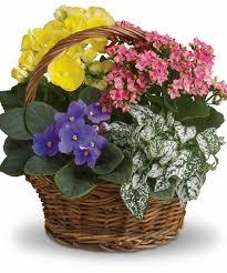Send Flowers San Antonio - los angeles flower delivery same day flower delivery los angeles