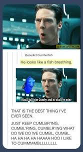 Funny Sherlock Memes - benedict cumberfish the meta picture