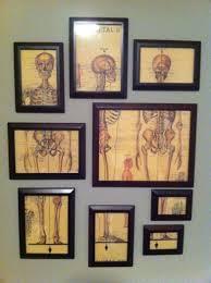 my 15 art wall art vintage medical medical illustration and