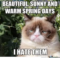 Grumpy Cat Snow Meme - speak of the devil beware the coming of spring allergies