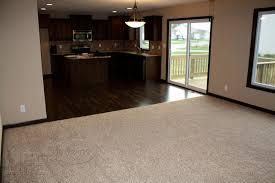 carpet colors for living room aloin info aloin info