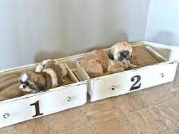 diy shabby chic pet bed 14 adorable diy beds your pooch will dresser drawers