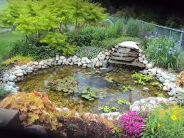 backyard gardens making a right choice can change the complete