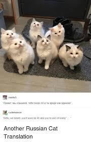 Cat Soon Meme - 25 best memes about russian cat russian cat memes