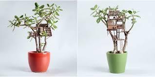 succulent plant mini tree house craftbnb
