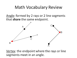 lines rays and line segments worksheets math homework measuring angles worksheet put worksheet in your hw