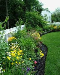 Backyard Decorating Ideas On A Budget Best 25 Backyard Privacy Ideas On Pinterest Backyard Trees