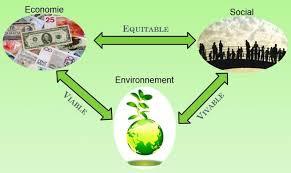 VII/Le développement durable