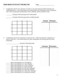 punnett square practice worksheet answers free worksheets library  with punnett square practice worksheet answers  templates and worksheets from comprareninternetnet