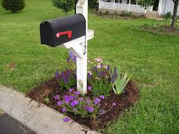 Mailbox Flower Bed Mailbox Garden Using Drought Tolerant Hardy Perennials To Create A