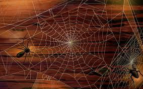 halloween spiders halloween spiders background clipartsgram com