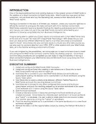 Executive Summary Example For Resume by Executive Summary Template Example Mughals