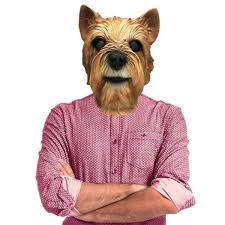 halloween costumes for yorkies dogs amazon com yorkie yorkshire terrier dog costume face mask off
