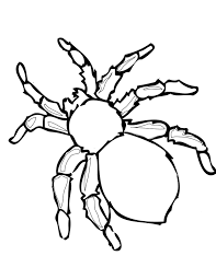 number names worksheets pictures spiders colour coloring
