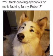 Fucking Funny Memes - you think drawing eyebrows on me is fucking funny robert meme xyz