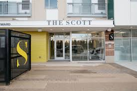 bakery bringing macarons and specialty cakes to the scott in brush
