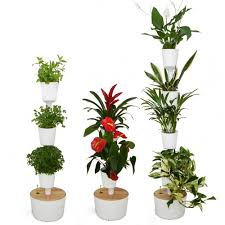 citysens self watering indoor vertical gardens citysens