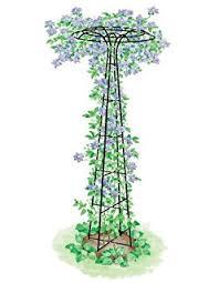 Obelisk Trellis Metal Amazon Com Tall Black Garden Obelisk This Round Metal Trellis