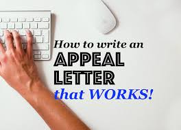 how to write an appeal letter for schengen visa refusal and get it