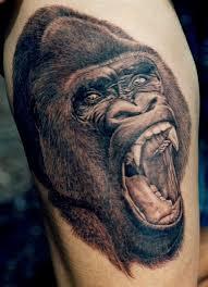 the 25 best wildlife tattoo ideas on pinterest fox tattoos