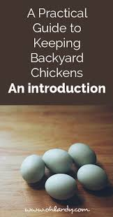 Backyard Chicken Com A Practical Guide To Keeping Backyard Chickens