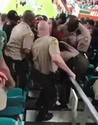 miami fan slaps officer drunk miami fan slaps a cop gif on imgur
