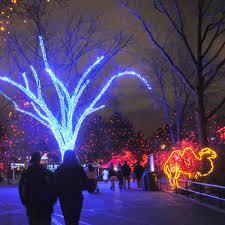 Zoo Lights Denver Co by Uptown Visit Denver