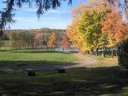 Pennsylvania scenery images File darlington township pennsylvania jpg wikimedia commons jpg