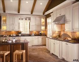 kitchen cabinet color trends 2014 home design