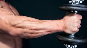 Best Forearm - front and center forearm workout fitness