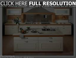 top kitchen design styles pictures tips ideas and options