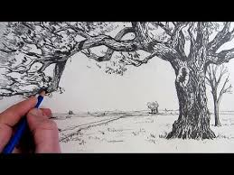 how to draw a tree narrated step by step youtube