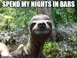 Dragon Sloth Meme - lovely dragon sloth meme sloth meme dragon kayak wallpaper