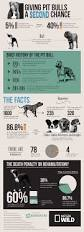 the truth about pit bulls u2013 nat geo tv blogs