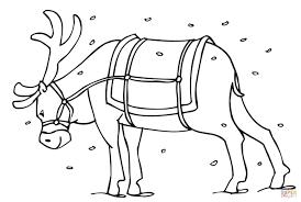 santa u0027s reindeer coloring page free printable coloring pages