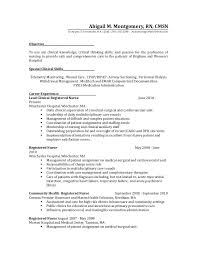 Resume Profiles Examples Amusing Examples Of Nursing Resumes