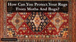 Rugs Only Denver Oriental Rug Cleaning Denver Persian Rug Cleaning